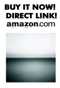 BUY THE NEW U2 CD NO LINE ON THE HORIZON RIGHT HERE FROM AMAZON.COM